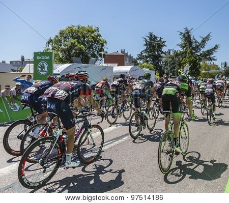 The Peloton - Tour De France 2015