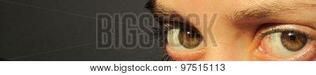 Wary Eyes
