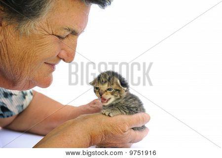 Senior woman holding kitten