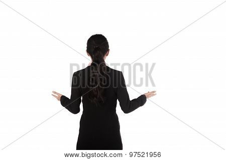Business Woman Giving Lecture Taken From Behind