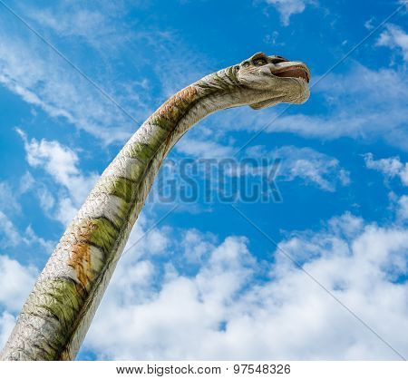 Brachiosaurus Against Blue Cloudy Background