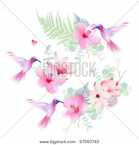 Delicate Tropical Flowers With Flying Hummingbirds Vector Design Set