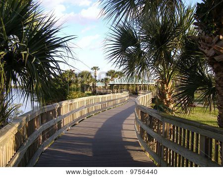 Winding walkway at the Manatee Sanctuary