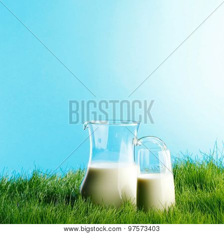 Milk jug and glass on fresh green grass field background