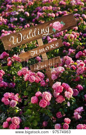 lIt is written on label word love amore wedding flowers