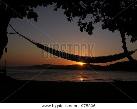 Hammock In Sunset