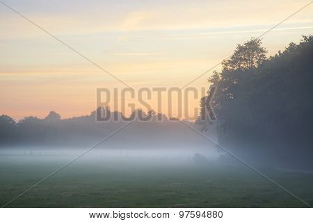 Misty Landscape During Sunrise In English Countryside Landscape