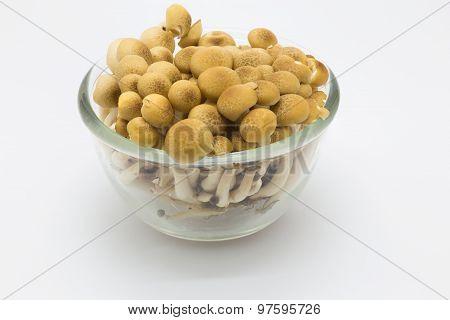 Brown beech mushroom, Shimeji mushroom in a glass bowl