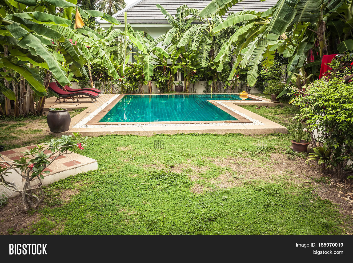 swimming pool private tropical image u0026 photo bigstock