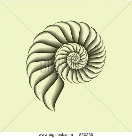 Shell5.Eps