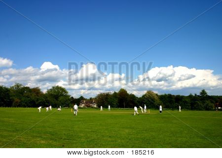 English Village Cricket