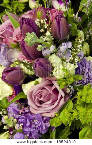 background of roses, tulips, and other flowers