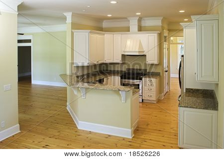 beautiful unfurnished luxury kitchen