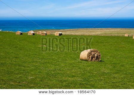 Hay Bales On Coast