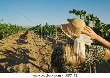 Beautiful Woman At Vineyard