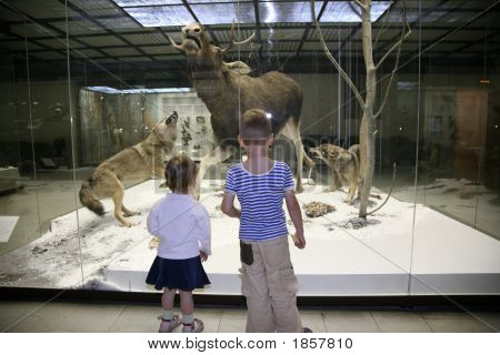 Children In The Museum
