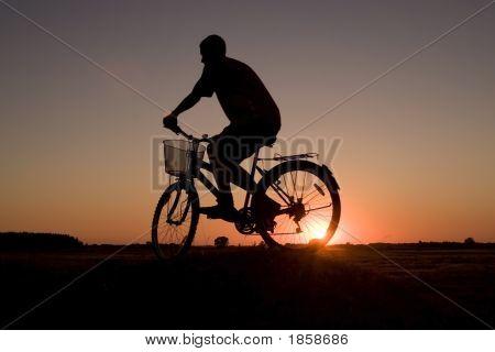 Biker Silhouette