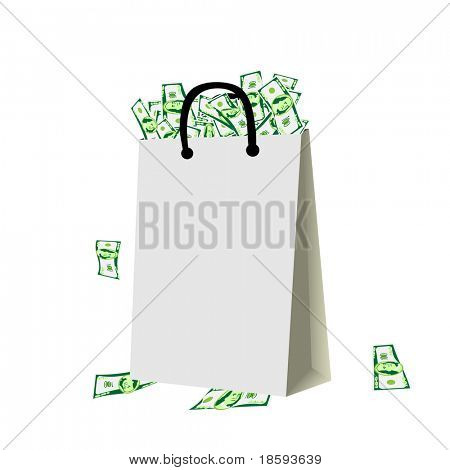 Shopping bag full of money