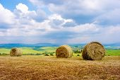 stock photo of hay bale  - Hay bales on rural landscape - JPG