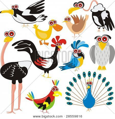 Birds Set - (Peacock, Rooster, Crow, Duck, Ostrich, Parrot, Dove, Eagle, Owl, Gull) - Cartoon Character - These different animals are drawn in cute design - Multi-use illustration