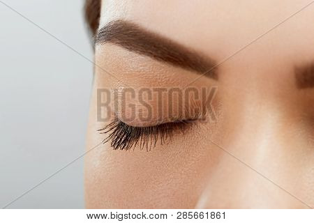 poster of Eyebrow Correction. Closeup Of Beautiful Young Woman With Perfect Makeup And Long Lashes Plucking Ey