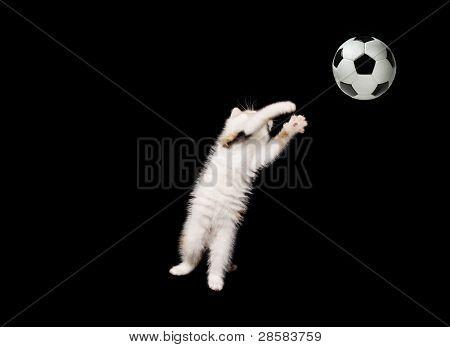 Fluffy Goalkeeper