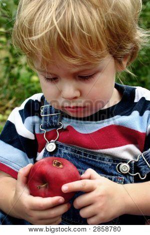 A Bad Apple