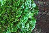 Fresh Green Romaine Lettuce. Romain Lettuce Bunch On Stylish Shabby Surface. Beautiful Green Bunch O poster