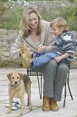 stock photo of mother child  - a young mother does up the boot laces of her son while the family dog looks on  - JPG