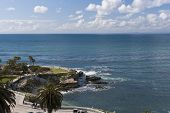 Park At The Pacific Ocean Coast - La Jolla, San Diego, California