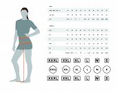 Measurements For Clothing. Vector Illustration Of The Dimensions Of The Female Waist And Hips. Size  poster