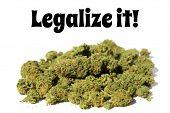 Marijuana. Pile of Marijuana with Legalize it! text. Close up of Cannabis Sativa. Prescription Medic poster