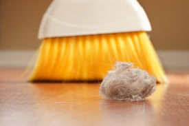 stock photo of dust mite  - A large clump of dust being swept up with a broom - JPG
