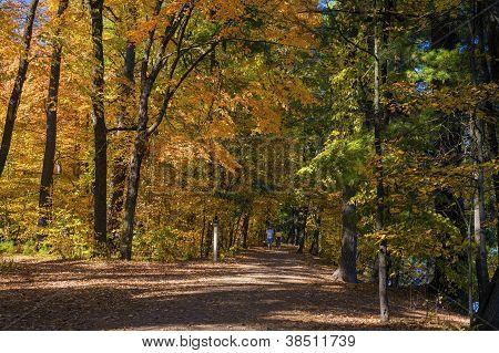 Hiking Trail, William O'brien S.p.