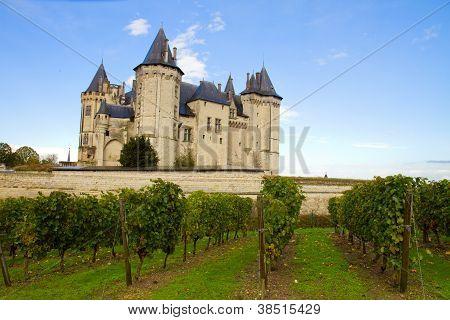 Saumur castle and vineyards