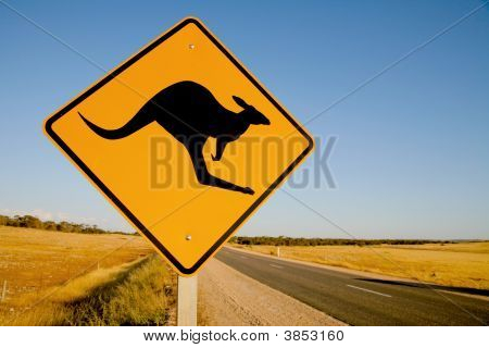 Kangaroo Warning Sign Australia