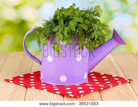 Colorful watering can with parsley and dill on wooden table on natural background