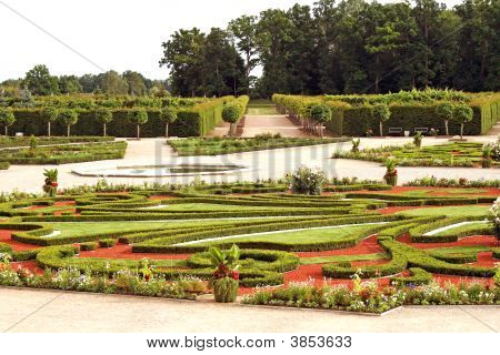 Beautiful Ornamental Garden