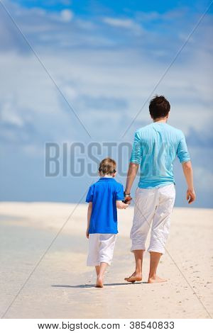 Back view of father and son walking on a tropical beach