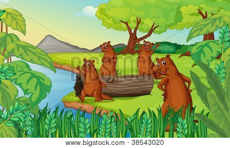 illustration of otters in a beautiful nature