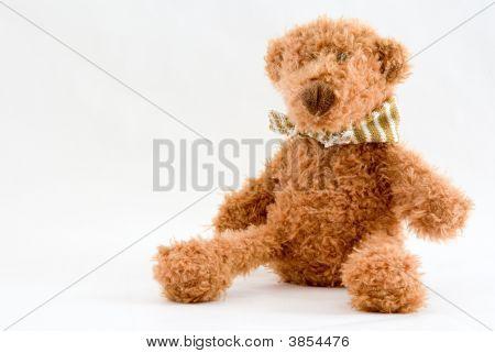 Tedy Bear