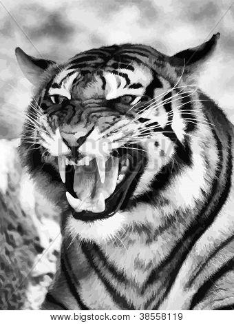 Cara enfadada tigre B&w Vector