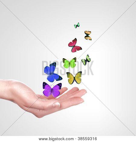 Human hands releasing a colourful butterflies illustration