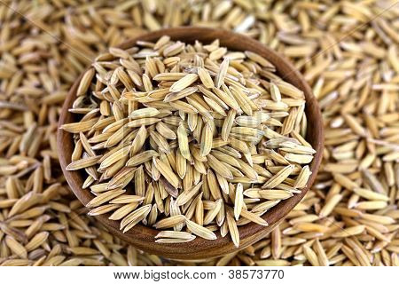 Organic unhusked rough Asian rice with Chaff