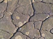 foto of lithosphere  - close up photo of a pennsylvania boulder - JPG