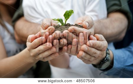 child with parents holding a new plant in hands