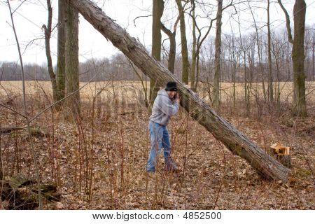 Man Lifting Tree