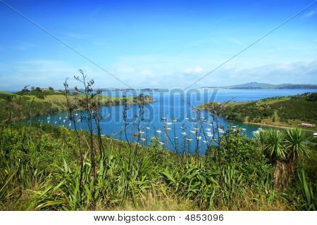 Marina At Waiheke Island