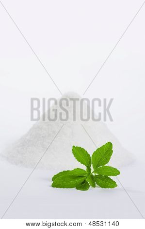 stevia leaf with a pile of sugar