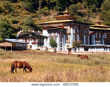 Horses Walk Near The Konchogsum Lhakhang Monastery In Jakar In The Bumthang Valley - Bhutan (focus I